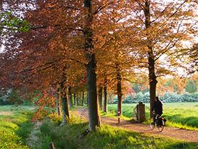 Fietsroute met fietser Assen die Arthuur fietsroute Drenthe fi