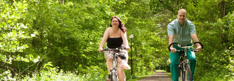 Foto met fietsers in het bos die de Arthuur fietsroute Veluwe fietsen.