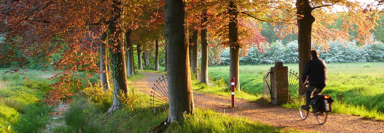 Fietsroute met fietser Assen die Arthuur fietsroute Drenthe fietst